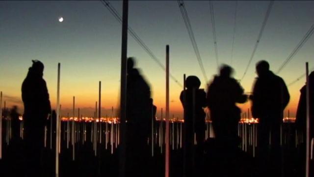 box-field-at-the-dusk